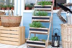 r Заводы сада весны растя в баках Плетеные корзины рядом с оборудованием сада против стены голубой страны ho стоковое изображение