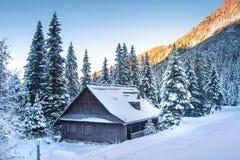 r : Морозный ландшафт горы Красивая сцена зимы с деревянным домом в горах Tatra стоковое фото