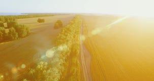 r 在绿色和黄色麦子农村领域和林木线的低飞行 股票录像