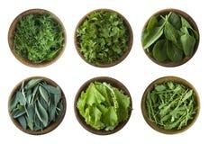 r 新鲜的绿色在白色背景隔绝的莴苣和草本 叶子贤哲、莴苣、芝麻菜、菠菜,荷兰芹和dil 库存图片
