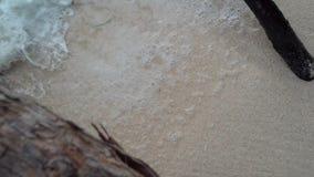 r 普拉兰岛 接近的波浪在大石头滚动 热带海岛豪华假期 旅游业,放松 股票录像