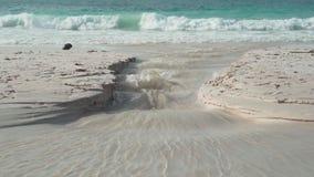 r 普拉兰岛 流动入海特写镜头的水清楚的小河 与白色沙子的美丽的空的海滩 影视素材