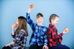 r 男孩和女朋友吃苹果快餐,当放松时 学校快餐概念 ? 免版税库存图片
