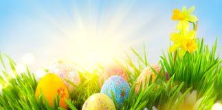 r 美丽的五颜六色的鸡蛋在春天在天空蔚蓝的草草甸与太阳边界设计 库存照片