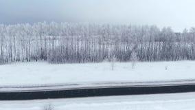 r 雪森林,空中射击 惊人的自然风景、冻森林和暗场路有雪的 股票录像