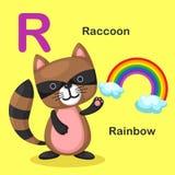 R-arco iris animal de la letra del alfabeto del ejemplo, mapache Imagen de archivo libre de regalías