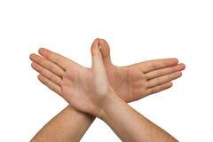 ręce na ptaka Obraz Stock