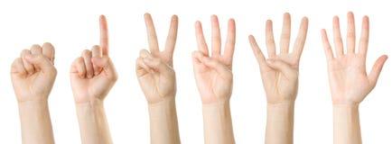 ręce, ustalanie liczby Zdjęcia Royalty Free