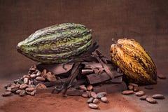 rå choklad Arkivfoto