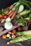 R?colte viable d'agriculteur, l?gumes de jardin d'agriculture photos stock