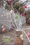 Ręcznie robiony dekoracyjne gałąź z Easter jajkami w wazie zdjęcia royalty free