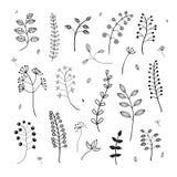 Ręcznie robiony set kwiatu i warzywa elementy Zdjęcia Stock