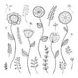 Ręcznie robiony set kwiatu i warzywa elementy Obraz Stock