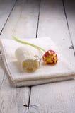 Ręcznik i toiletries Obrazy Stock