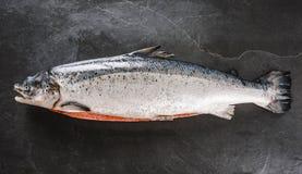 R?d fisk f?r ny r? lax med kryddor p? is ?ver m?rkerstenbakgrund Den id arkivfoton