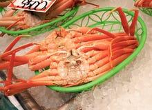 R?d krabba f?r konung Crab Taraba eller Alaska konung Crab p? is arkivfoto