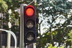 R?d signal f?r trafiksignal Singapore N?rbild royaltyfri illustrationer