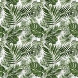 Картина тропических листьев акварели ботаническая безшовная с заводами r бесплатная иллюстрация