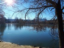 R?flexions sur le lac image libre de droits