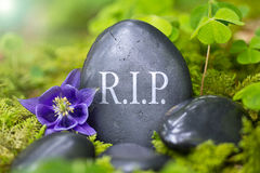 R.I.P. Stock Photography