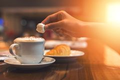 ręka chwyta marshmallow nad kawa Obraz Royalty Free