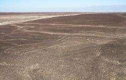 Ręka diagram, Nazca linie, Peru Fotografia Stock
