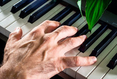 Ręka klucze, pianino Zdjęcie Stock