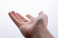 Ręka otwarta dla gesta Zdjęcia Royalty Free