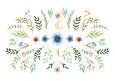 R?ka rysuj?ca akwareli ilustracja Skład z botaniczną wiosną opuszcza, branchws i kwiaty greenfield t?a t?a projektu karty kwiecis royalty ilustracja