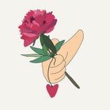 Ręka trzyma czerwonego kwiatu Zdjęcie Royalty Free