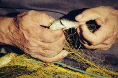 Ręka trzyma ryba w sieci Fotografia Stock