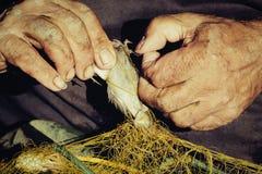 Ręka trzyma ryba w sieci Obraz Royalty Free