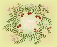 Ręka wzoru projekt z elementami cranberries Zdjęcia Royalty Free