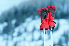 rękawiczek pary narta Zdjęcia Royalty Free