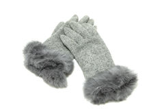 rękawiczki elegancki grey Obraz Stock