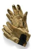 rękawiczki praca Fotografia Stock