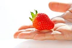 ręki czerwieni truskawka Zdjęcie Stock
