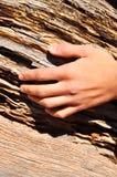 ręki drewno Obraz Royalty Free