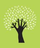 ręki drzewo Obrazy Stock