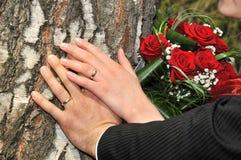 ręki dwa Zdjęcie Royalty Free