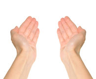 ręki dwa Zdjęcie Stock