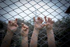 Ręki dzieci na ogrodzeniu Obraz Stock