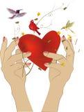 Ręki i serce Obrazy Royalty Free