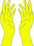 ręki istota ludzka Obraz Stock