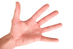 ręki istota ludzka Zdjęcie Stock