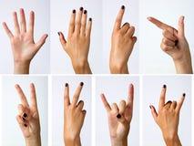 ręki kobieta s Zdjęcie Royalty Free