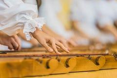 Ręki na Etnicznym instrumencie Fotografia Stock
