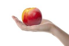 ręki nektaryny kobieta Fotografia Stock