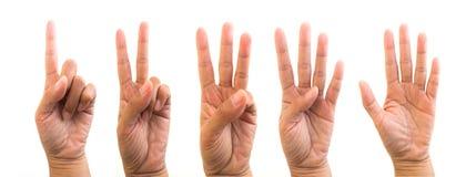 Ręki, palce i liczby. Obraz Royalty Free