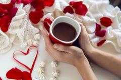 Ręki trzyma czerwonego kubek kawa Obraz Stock